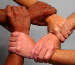 solidariteit